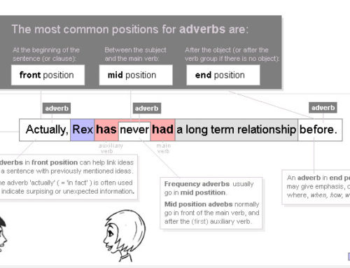 Position of adverbs 2