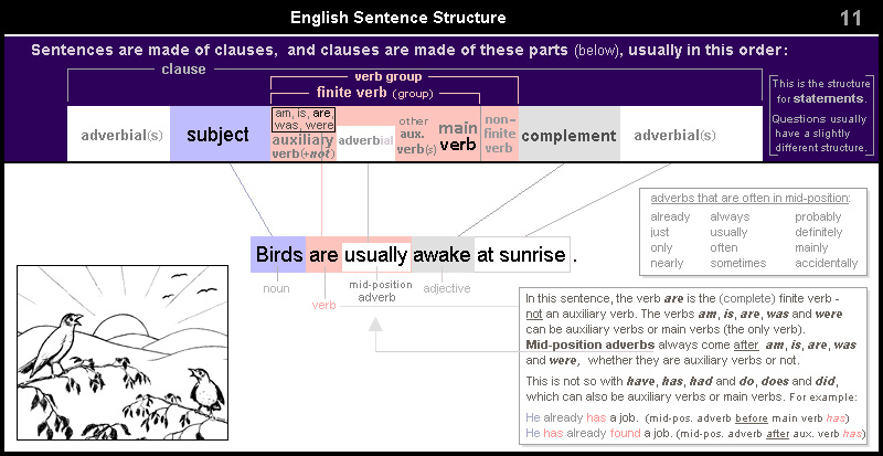English Sentence Structure 11 – clause with verb 'are' followed by mid-position adverb